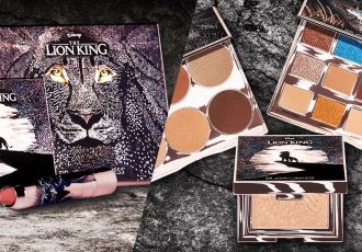 lion king makeup cover image