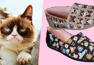 skechers grumpy cat cover image