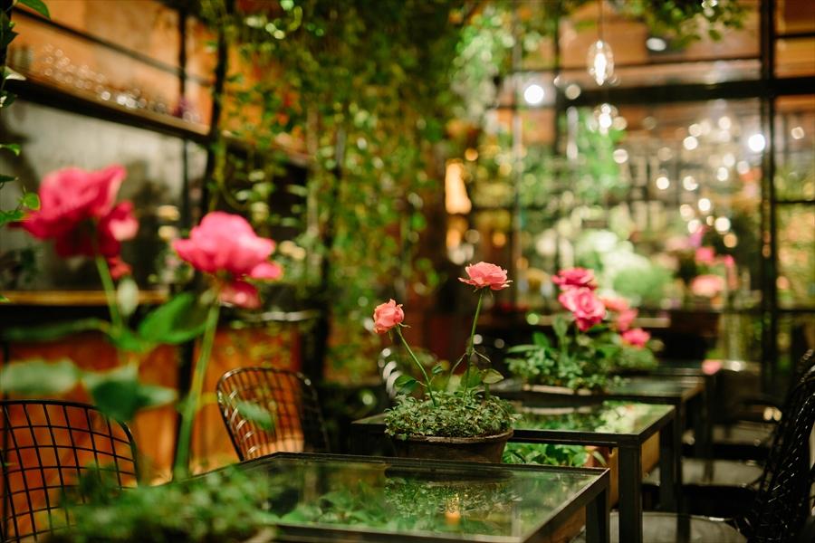 tokyo cafes aoyama tea house