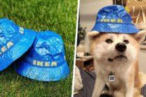 ikea-bucket-hat (3)