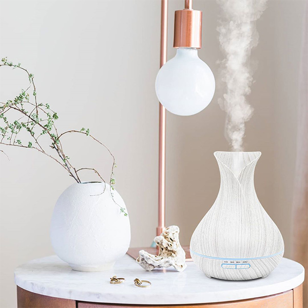 home-appliances-humidifier