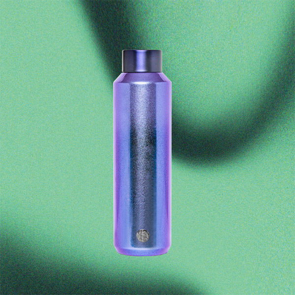 starbucks holiday 2020 purple water bottle