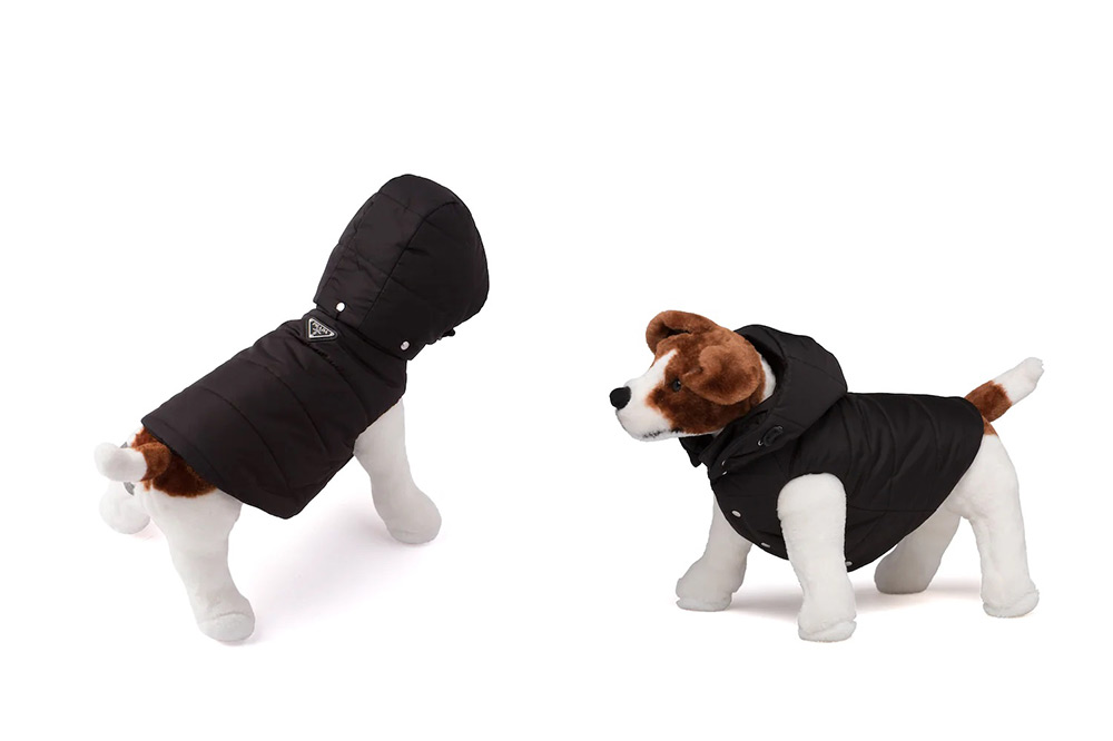 prada-dog-raincoat-harness
