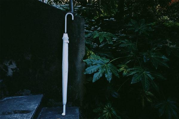 paw prints umbrella long