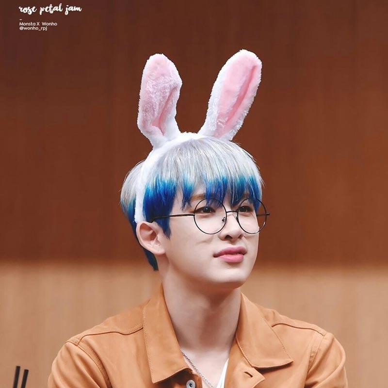 Wonho Facts Bunny