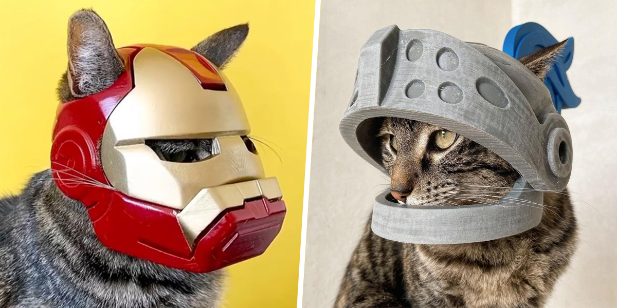 Cat Helmets