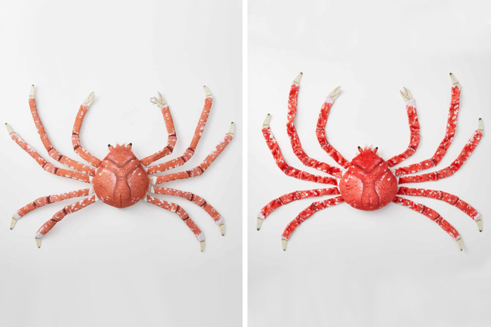 Spider Crab Bag